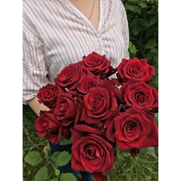 Роза красная штучно