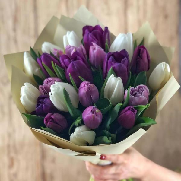 Тюльпаны 25 шт
